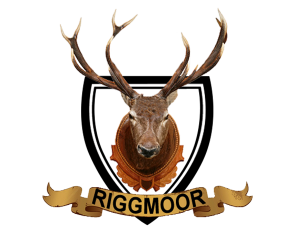 Riggmoor Reindeer Logo - Design by Intense Web Design Harrogate