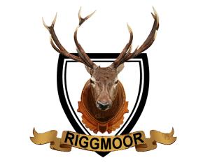 Riggmoor Reindeer Logo - Design by Intense Web Design Harrogate
