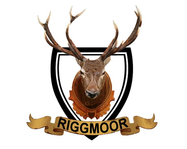 Riggmoor Reindeer