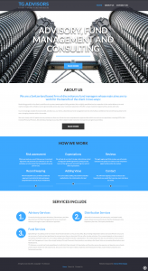 TG Advisors Website - Design by Intense Web Design Harrogate